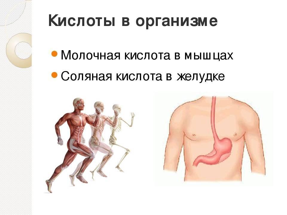Как вывести из мышц молочную кислоту