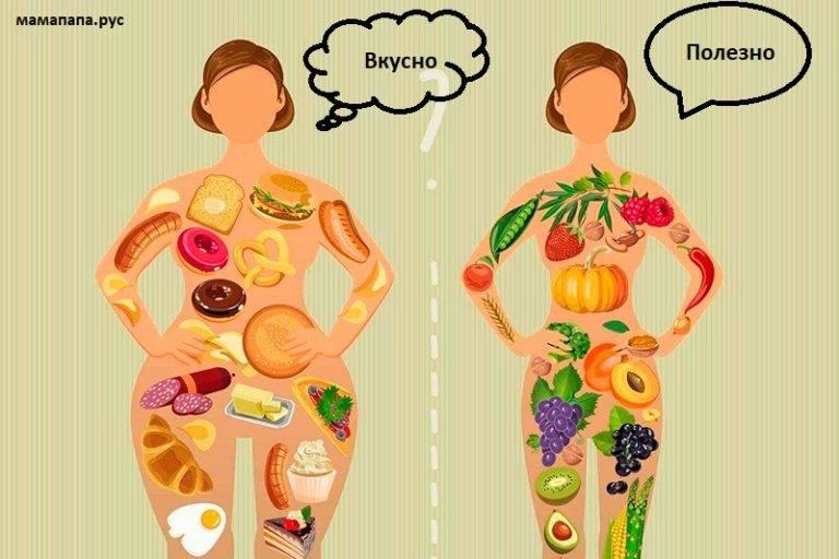 Как ускорить обмен веществ: 11 способов разогнать свой метаболизм