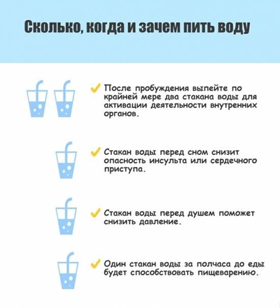 Пить воду перед едой: зачем и можно ли это делать, за сколько до приема пищи нужно выпивать стакан, полезно ли это