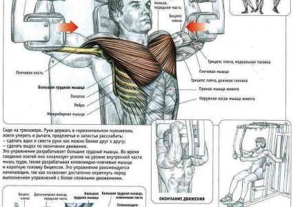Сведение ног в тренажере: видео и фото упражнения