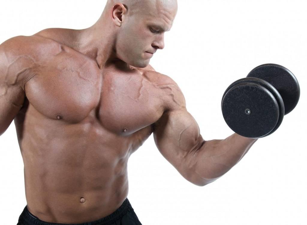 5 лучших добавок для быстрого роста мышц   какие добавки принимать для роста мышц