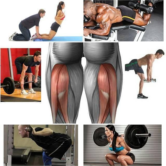 Бицепс бедра: лучшие упражнения в тренажерном зале, в домашних условиях
