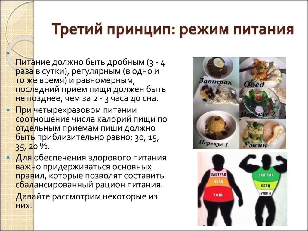 Дробное питание: что такое, и как считатьбжу