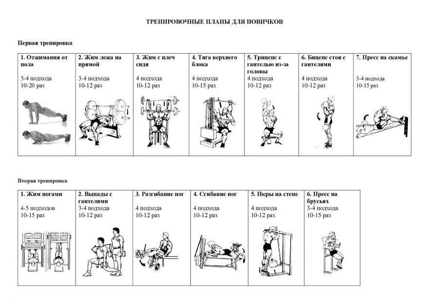 Комплекс упражнений для женщин в тренажерном зале: план тренировки - tony.ru