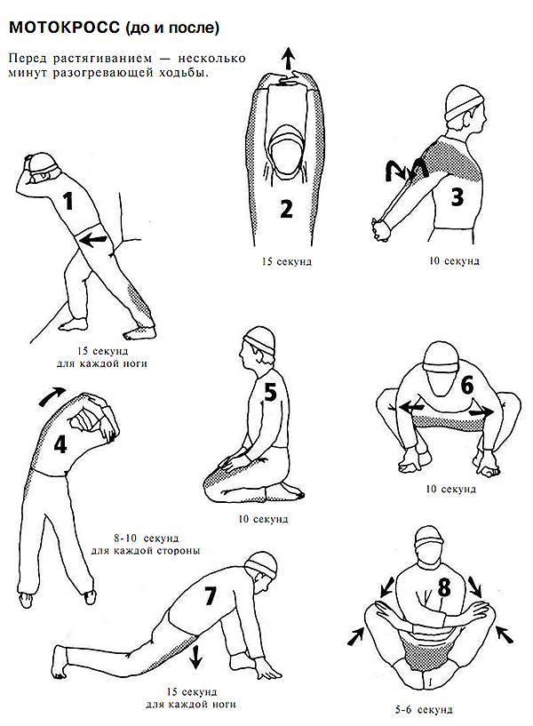 Разминка и заминка (растяжка) для бега или кардио: подборка упражнений