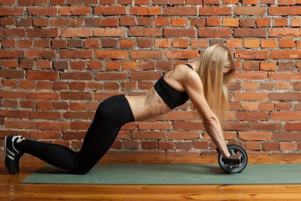 Какой выбрать гимнастический ролик для пресса | health you