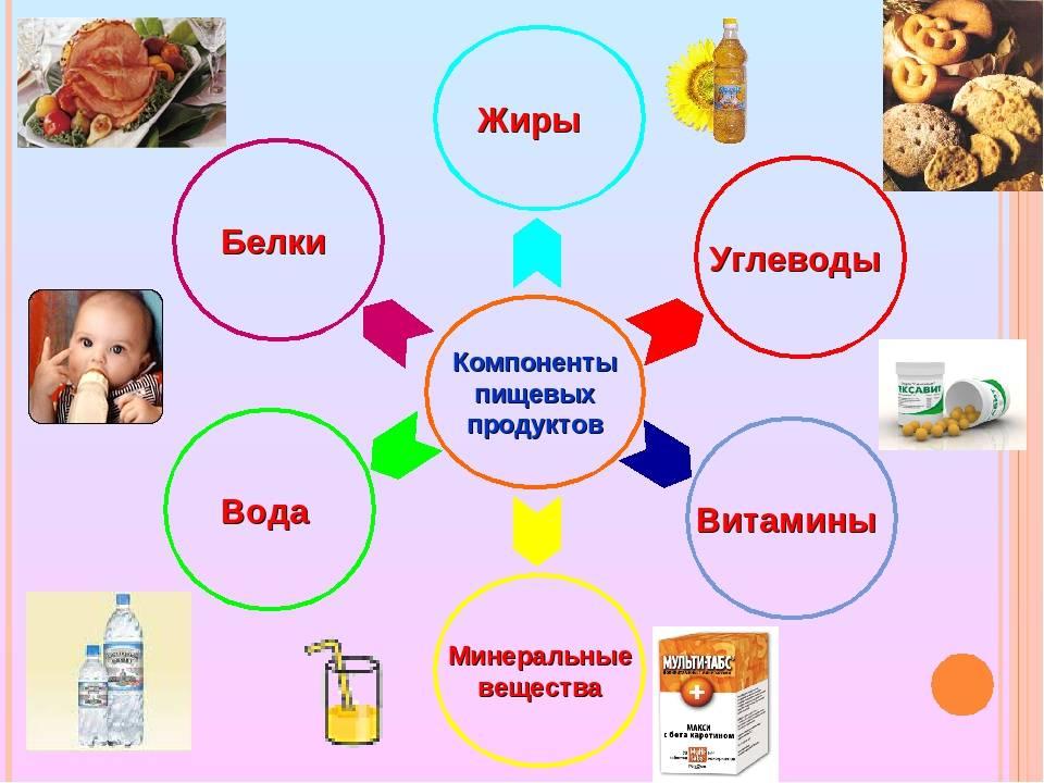 3 правила здорового питания