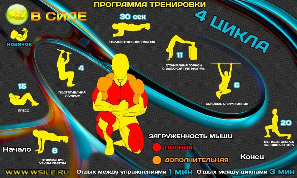 Кроссфит комплексы упражнений для начинающих