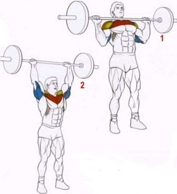 Топ 4 упражнения на грудь со штангой
