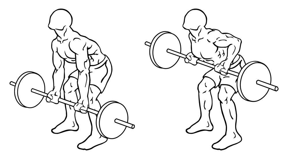 Упражнения для спины: в домашних условиях и в тренажерном зале