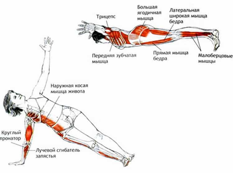 Упражнение «небесная ласточка». избранные упражнения и медитации