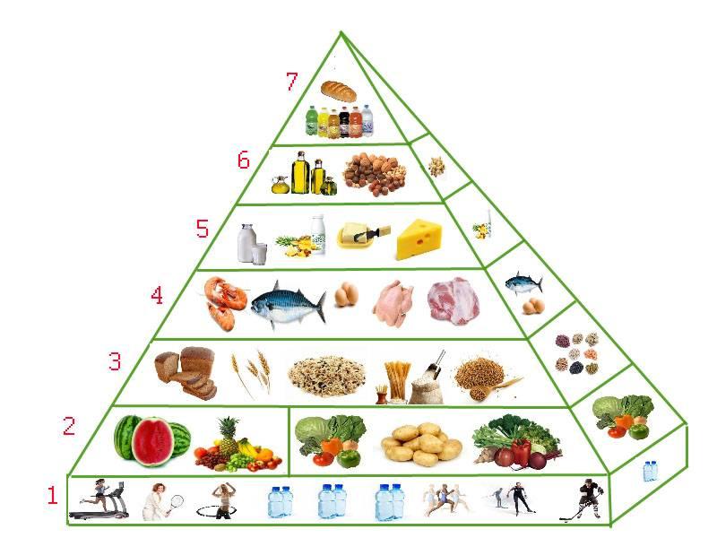 4.2распределение калорий питания в течение дня при трехразовом питании
