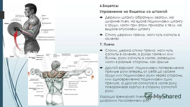 Техника дыхания во время силовых упражнений