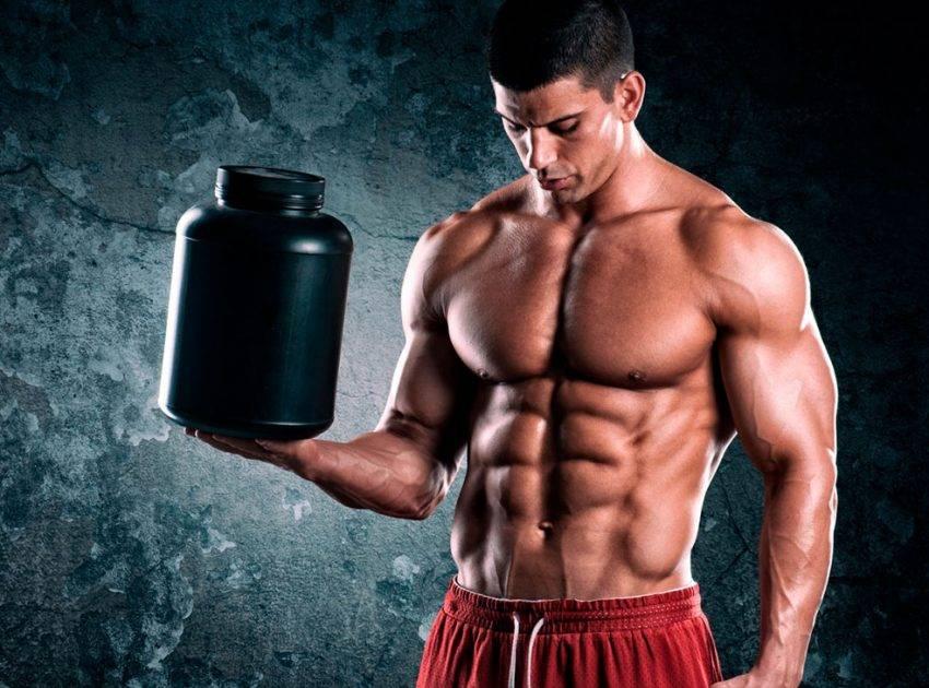Спортивное питание для начинающих: основные виды добавок идля чего они нужны