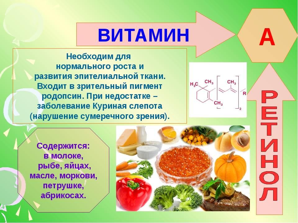 Ретинол (витамин а): описание, где содержится, полезные свойства и суточная норма