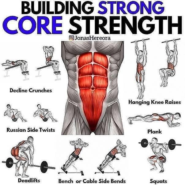 Тренировки для спины и мышц кора - beauty hub