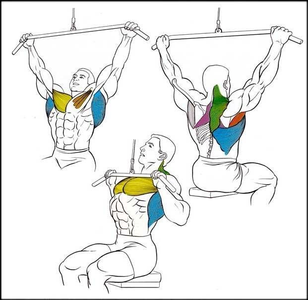 Тяга верхнего блока к грудной клетке широким и узким хватом и вариант тяги за голову