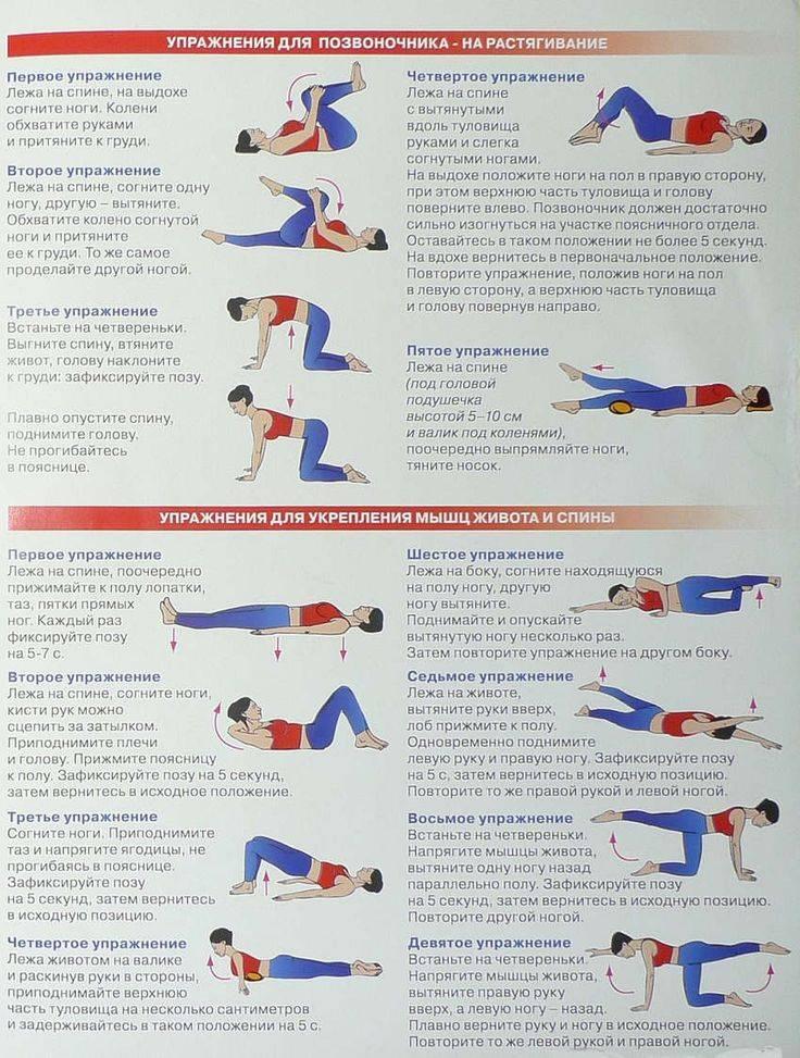 Растяжка поясницы: упражнения для домашних условий