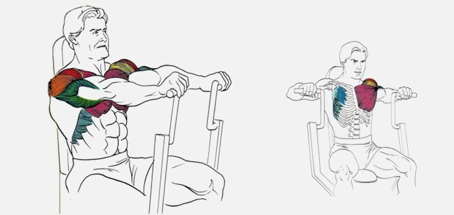 Жим в хаммере: варианты техники в тренажере сидя, лежа и в наклоне