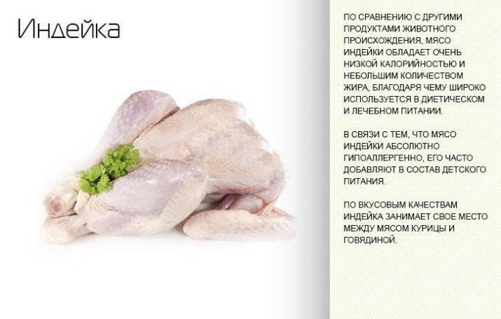 Куриные крылышки варёные или тушёные — калорийность (сколько калорий в 100 граммах)