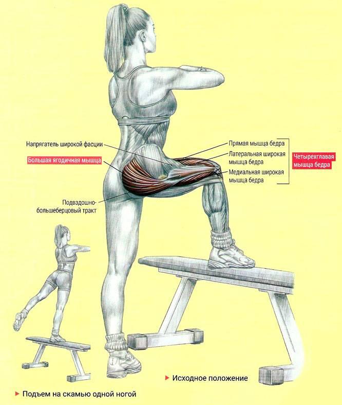 15 упражнений с резинкой: комплекс на все группы мышц (и без другого инвентаря) - леди стиль жизни