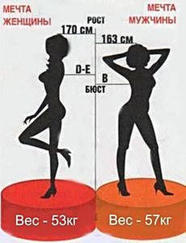 Идеальные пропорции мужского тела
