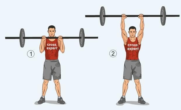 Упражнения со штангой на грудь: базовые основы, правила проведения занятия, техника выполнения и составление программы тренировки - tony.ru
