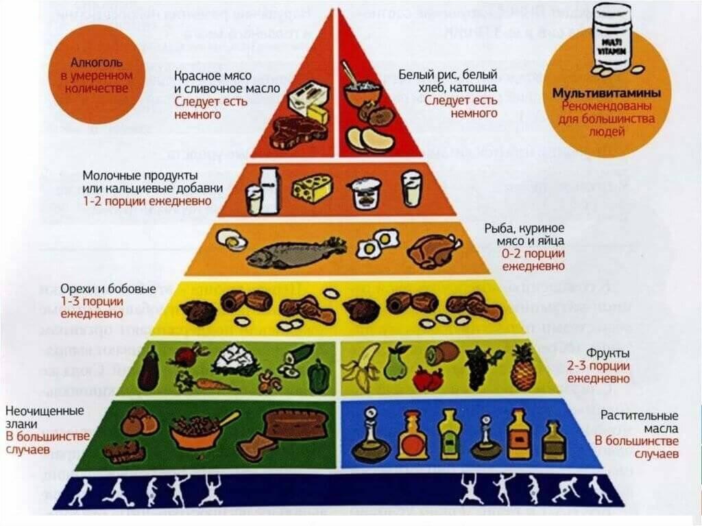 Распределение рациона. распределение пищи