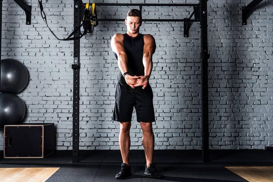 Упражнения на бицепс ? - описание механики, программы тренировок
