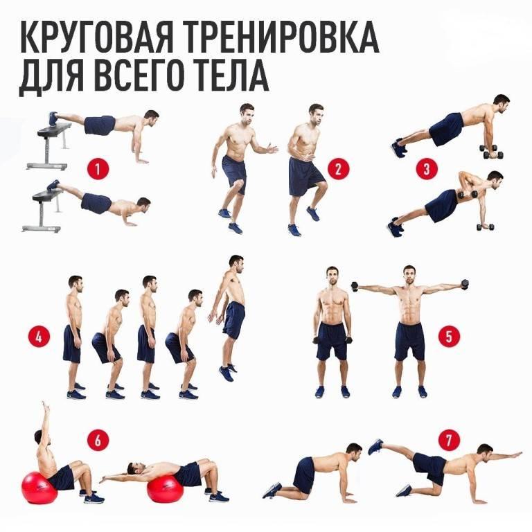 Круговая тренировка в тренажёрном зале и дома: упражнения, программа