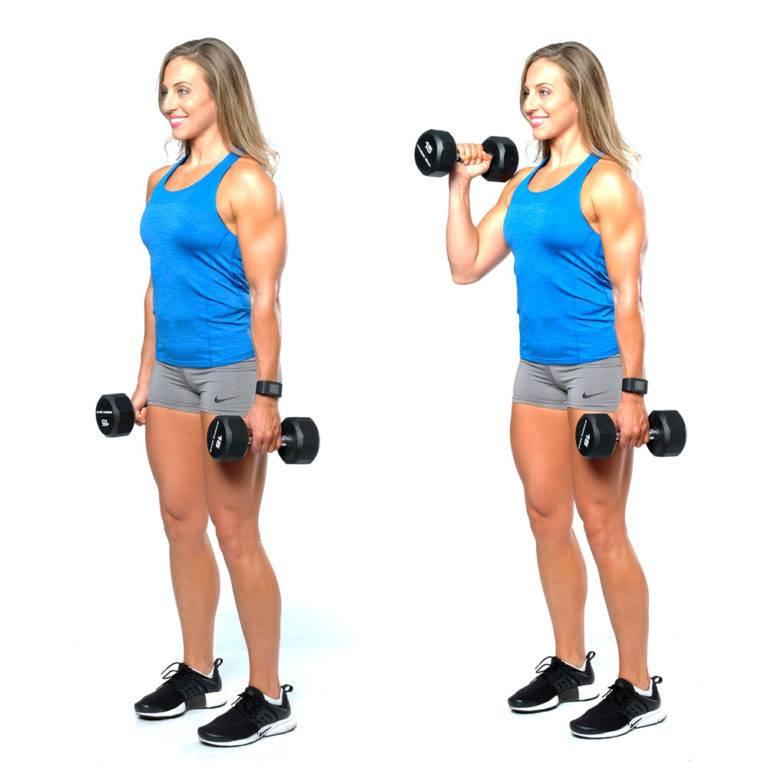 Поочередный подъем гантелей на бицепс, советы в тренировках мышц