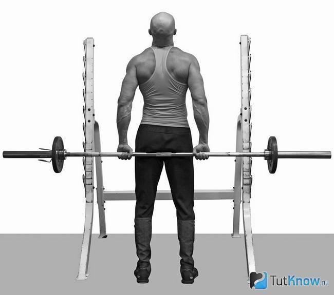 Тяга ли хейни – техника со штангой за спиной и варианты упражнения для задних дельт и трапеции