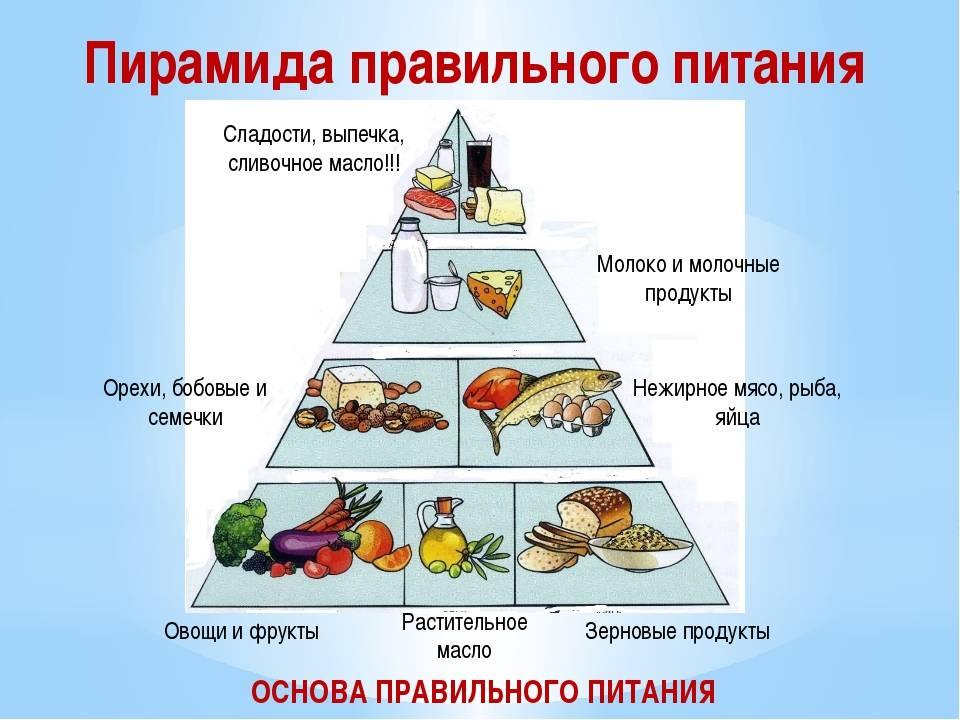 Пирамида питания – основные правила и варианты меню