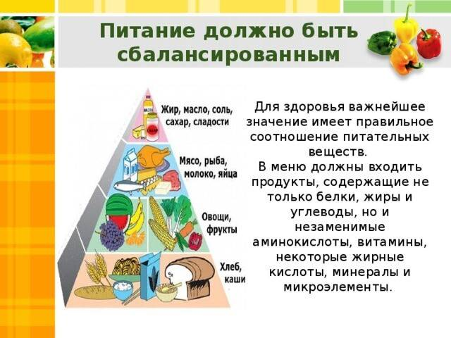 Основы здорового питания: базовые принципы и простые правила