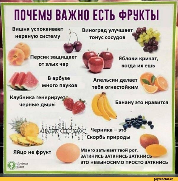 Когда лучше всего есть фрукты до еды или после. когда положено кушать фрукты, чтобы они легко усваивались?