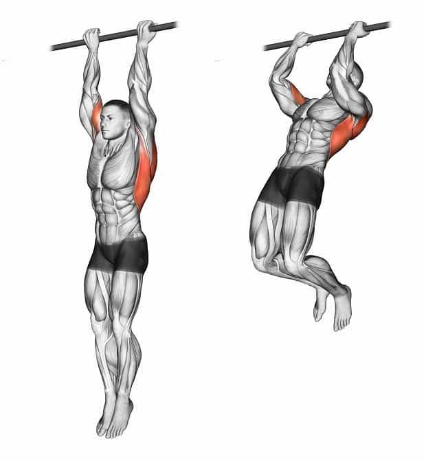 Подтягивания узким хватом (обратным, параллельным, прямым) на турнике: какие мышцы работают, техника выполнения
