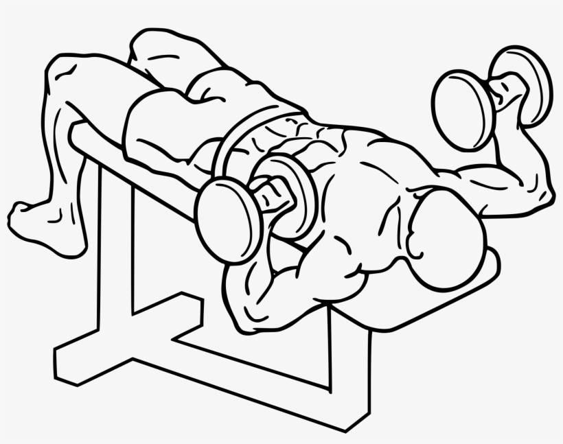 Жим штанги лежа: все, что нужно знать перед тренировкой