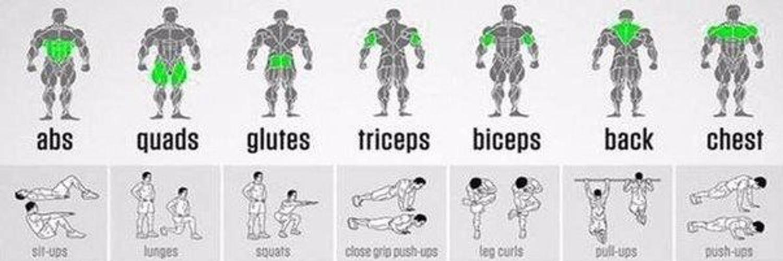 10 комплексных упражнений на все группы мышц