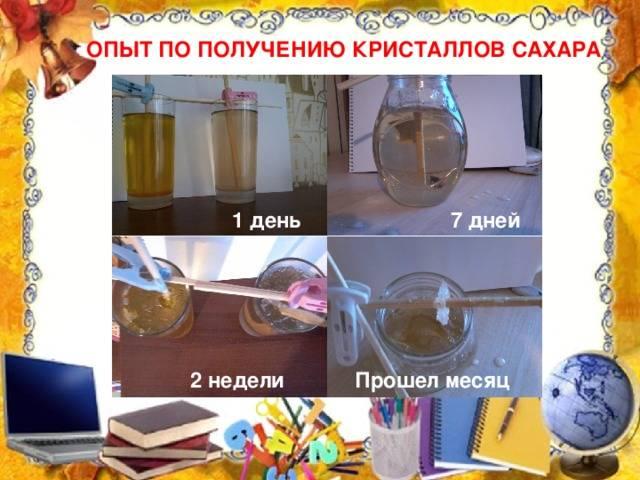 Голодание на воде 7 дней: отзывы, результаты. лечебное голодание