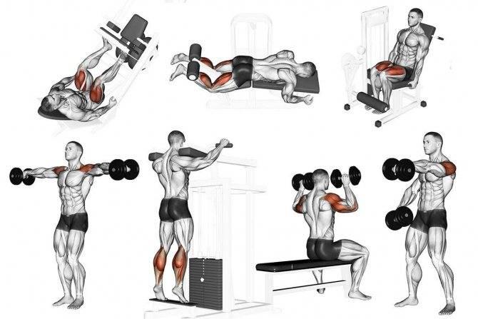 Качаем плечи: 7 тренировочных программ для больших дельт.
