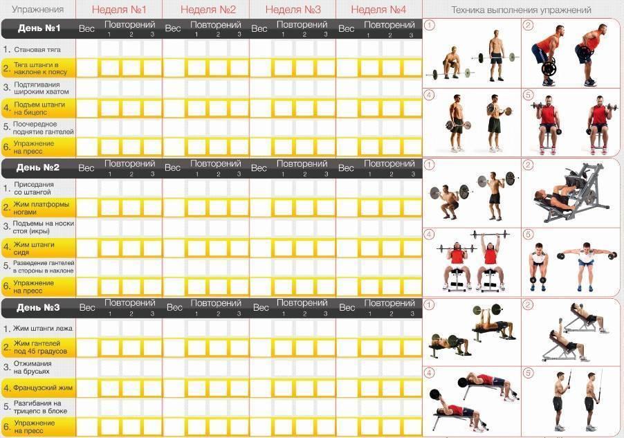 Варианты программ сплит-тренировок: на 2, 3, 4 и 5 дней в неделю
