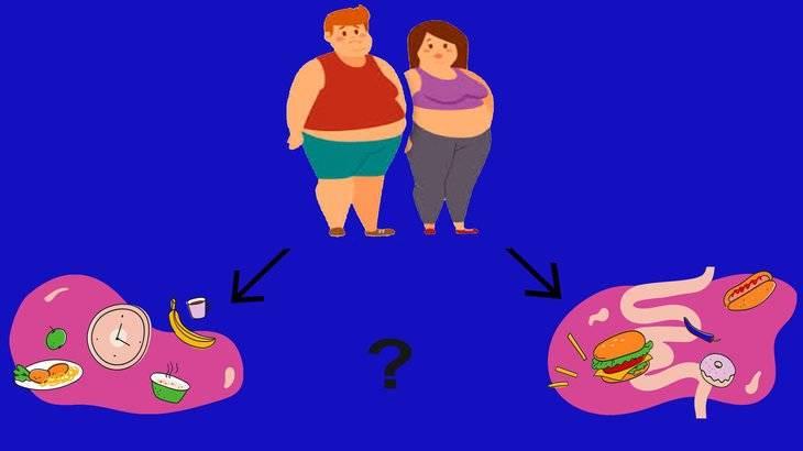 Инсулин: как быстро и эффективно начать похудение.   спортнаука