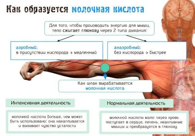 Бородавки и папилломы (+фото)