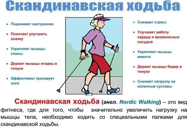 Скандинавская ходьба (ходьба с палками): как правильно ходить (техника), чем полезна (показание и противопоказания норвежская и финской ходьба) | sh