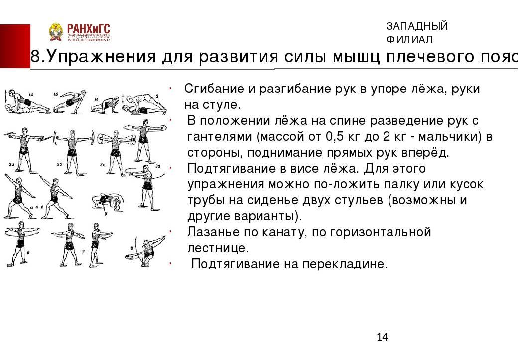 Программа тренировок на выносливость: упражнения, особенности для новичков
