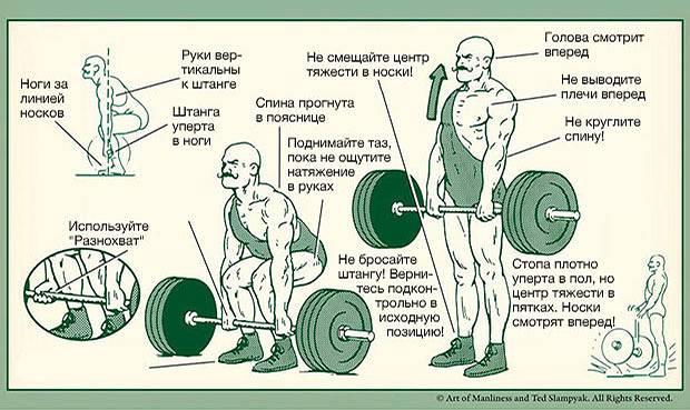 Виды становой тяги: нюансы техники, типы хватов
