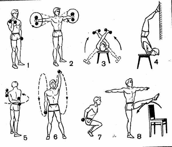 Упражнения с гантелями в домашних условиях для мужчин