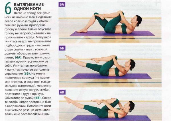 Пилатес для начинающих в домашних условиях: лучший комплекс упражнений для эффективных тренировок дома