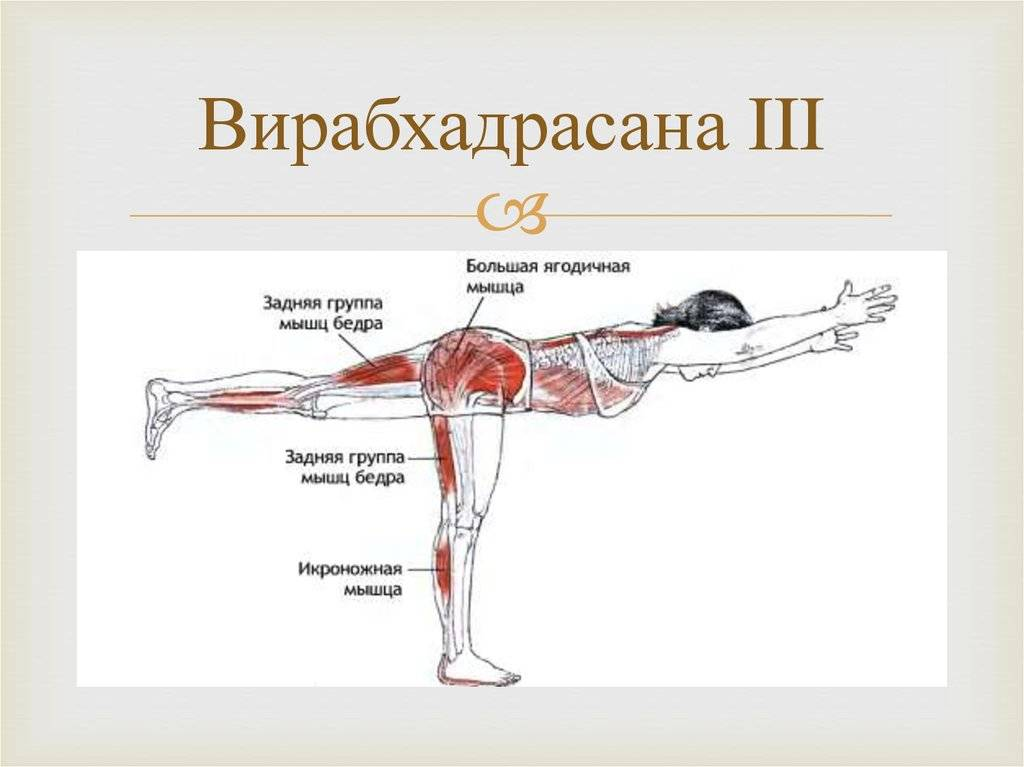 ✅ как правильно делать упражнение ласточка. ласточка на турнике: как научиться делать горизонтальный вис сзади. упражнение для брюшного пресса - elpaso-antibar.ru