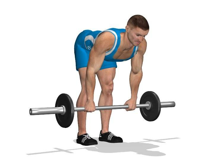 Становая тяга – 12-недельная программа тренировки